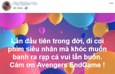 Khán giả Việt xúc động sững sờ, phấn khích tột độ sau suất chiếu ENDGAME đầu tiên - Ảnh 3.