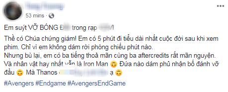 Khán giả Việt xúc động sững sờ, phấn khích tột độ sau suất chiếu ENDGAME đầu tiên - Ảnh 9.