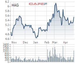 ĐHĐCĐ HAGL: 1-2 năm nữa khi có tiền, Bầu Đức sẽ mua vào cổ phiếu Công ty - Ảnh 1.