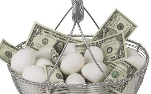 """Khởi nghiệp: Có nên bỏ hết """"trứng"""" vào 1 """"giỏ""""?  - Ảnh 1."""