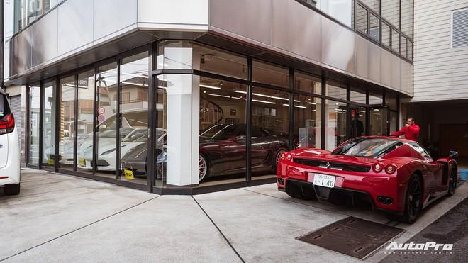 mr. ferrari - photo 12 1554778779728289168729 - Mr. Ferrari – Từ tay chơi siêu xe tới cha đỡ đầu của 'ngựa chồm' tại Nhật Bản