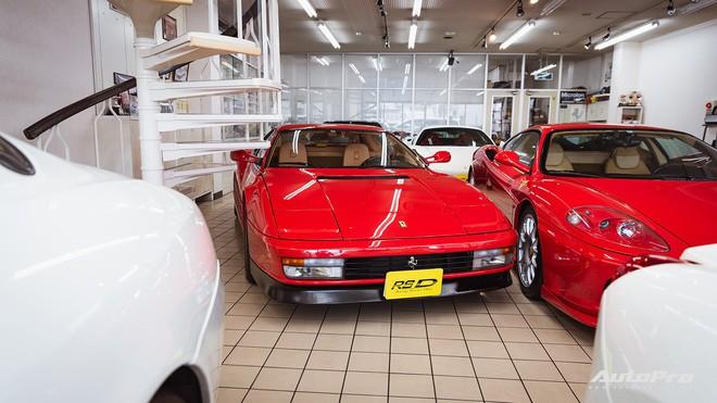 mr. ferrari - photo 15 15547787797321038675744 - Mr. Ferrari – Từ tay chơi siêu xe tới cha đỡ đầu của 'ngựa chồm' tại Nhật Bản