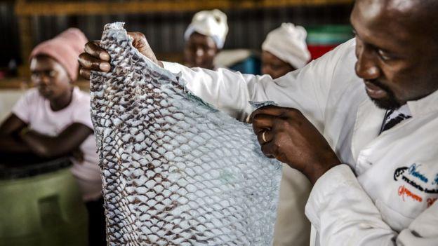Những tấm da cá có mùi tanh vạn người chê được nâng tầm thành những món thời trang cao cấp mang thương hiệu Dior, Salvatore Ferragamo như thế nao? - Ảnh 3.