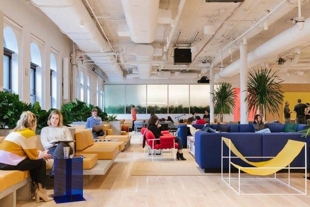 Hành trình từ một kẻ tự phụ đến một tỷ phú của CEO và người đồng sáng lập trẻ tuổi nhất của Isarel tạo nên startup tỷ đô WeWork -Adam Neumann - Ảnh 3.