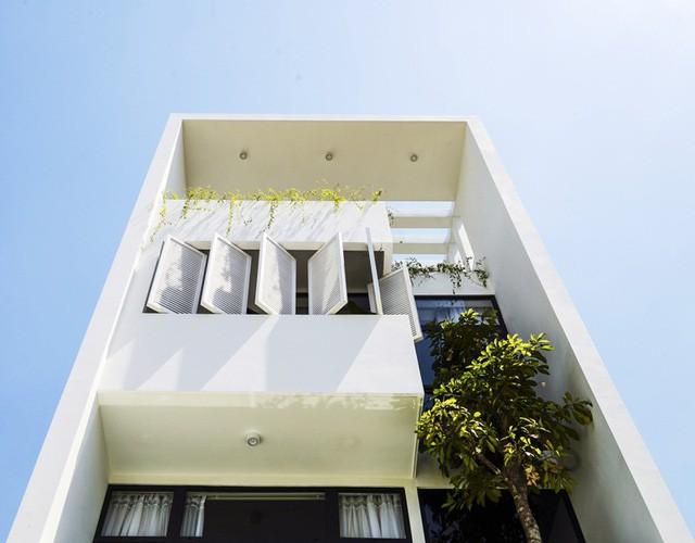 Ngôi nhà có thiết kế mở kết nối mọi thành viên - Ảnh 2.