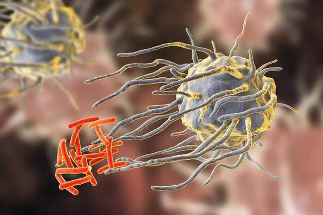 Thuốc kháng sinh đang ngày càng trở nên vô dụng, nhiều bệnh thông thường cũng sẽ không thể điều trị được - Ảnh 1.