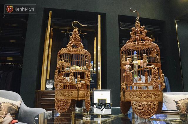 Gặp ông trùm thời trang với bộ sưu tập chim khủng 10 tỷ đồng: Chim nằm điều hòa, có camera an ninh và hai nhân viên chăm sóc đặc biệt - Ảnh 10.