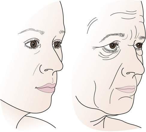 Khuôn mặt sẽ thay đổi như thế nào khi chúng ta già đi? - Ảnh 1.