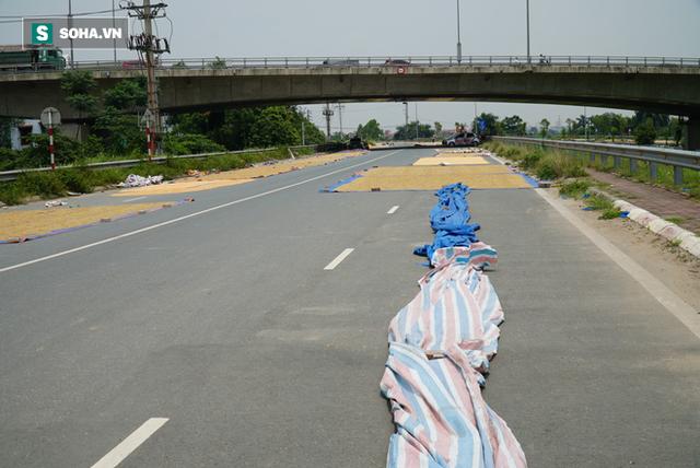 Cận cảnh đường dẫn lên cây cầu đẹp nhất Việt Nam bị người dân Hà Nội hô biến thành nơi phơi thóc - Ảnh 6.