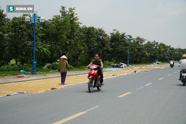 Cận cảnh đường dẫn lên cây cầu đẹp nhất Việt Nam bị người dân Hà Nội hô biến thành nơi phơi thóc - Ảnh 9.