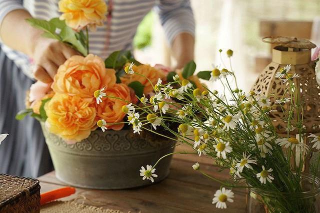 Cặp vợ chồng lập trình viên từ chối mua nhà ở thành phố, về quê xây nhà nhỏ bên khoảng sân vườn trồng rau và hoa mỗi ngày - Ảnh 18.