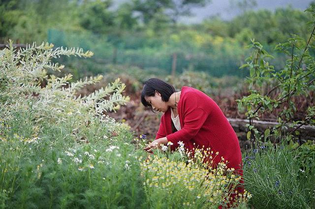 Cặp vợ chồng lập trình viên từ chối mua nhà ở thành phố, về quê xây nhà nhỏ bên khoảng sân vườn trồng rau và hoa mỗi ngày - Ảnh 3.