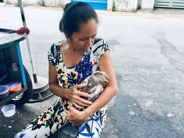 Hiếm muộn 24 năm, vợ chồng Sài Gòn gọi vịt là con, ăn ngủ cùng - Ảnh 3.