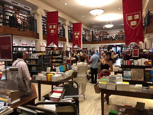 """Chuyện học, chuyện ngủ của sinh viên Harvard: Thư viện là nhà, cũng """"cú đêm"""" và stress như ai - Ảnh 2."""