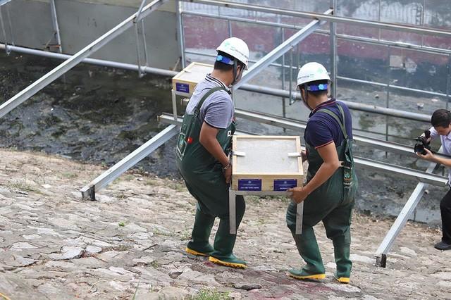 Chuyên gia Nhật tính kế không để triệu khối nước cuốn trôi kết quả sông Tô Lịch - Ảnh 4.