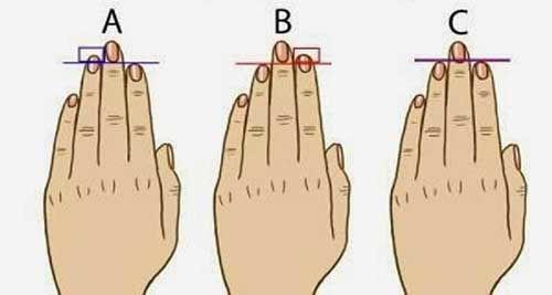 So sánh độ dài ngón tay áp út với ngón trỏ, biết ngay ai làm thuê, ai có tướng làm lãnh đạo - Ảnh 1.