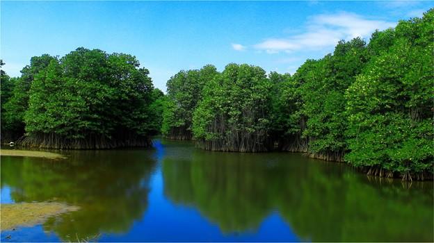 hồ tràm – bình châu - 4 15639505115101051949835 - Hồ Tràm – Bình Châu: Thời điểm vàng để đầu tư