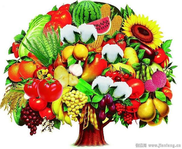 6 nguyên tắc vàng trong ăn uống để luôn khỏe mạnh đẩy lùi bệnh tật - Ảnh 2.