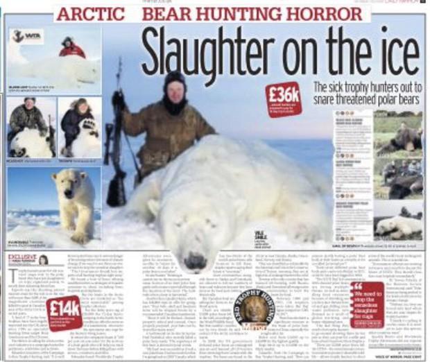 Vạch trần các tour săn bắn 5.000 con gấu Bắc Cực: Huy chương đẫm máu của giới thợ săn giàu có khiến cả thế giới căm phẫn - Ảnh 4.
