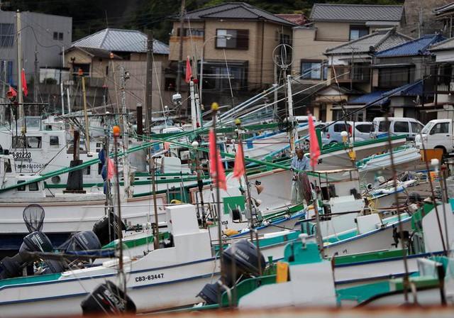 Mặc thế giới phản đối, người Nhật vẫn kiên quyết giữ gìn đặc sản gây tranh cãi này: Từ món sống đến chiên xù, ăn cá voi theo cách nào cũng có! - Ảnh 2.