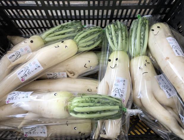 Trước nguy cơ bị vứt bỏ, loạt củ cải trắng xấu xí đã được nông dân Nhật Bản giải cứu nhờ bao bì cực thú vị - Ảnh 2.