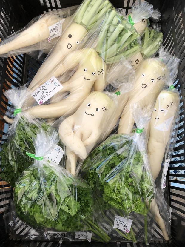 Trước nguy cơ bị vứt bỏ, loạt củ cải trắng xấu xí đã được nông dân Nhật Bản giải cứu nhờ bao bì cực thú vị - Ảnh 3.