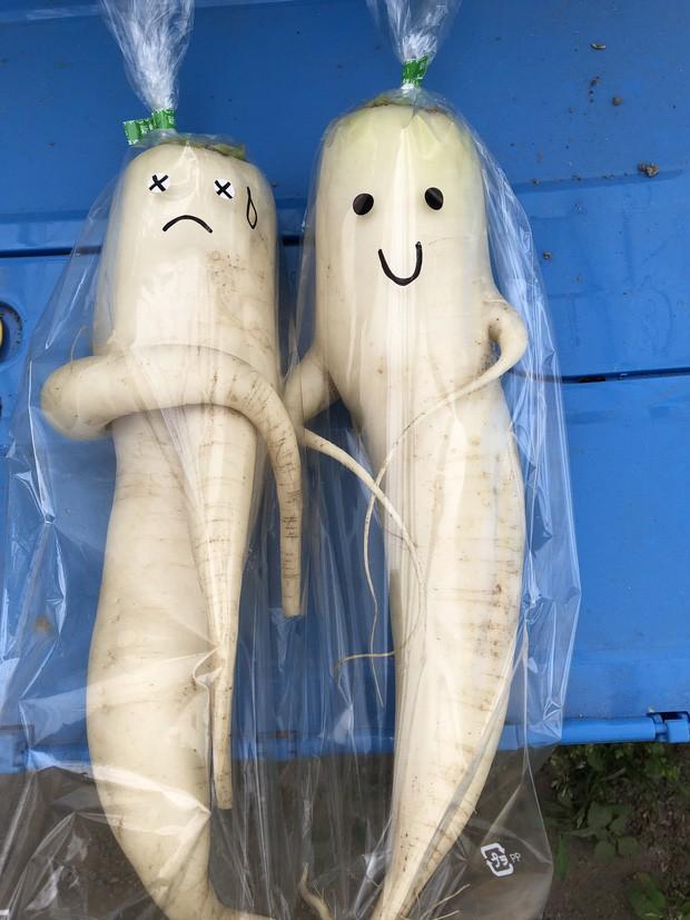 Trước nguy cơ bị vứt bỏ, loạt củ cải trắng xấu xí đã được nông dân Nhật Bản giải cứu nhờ bao bì cực thú vị - Ảnh 5.