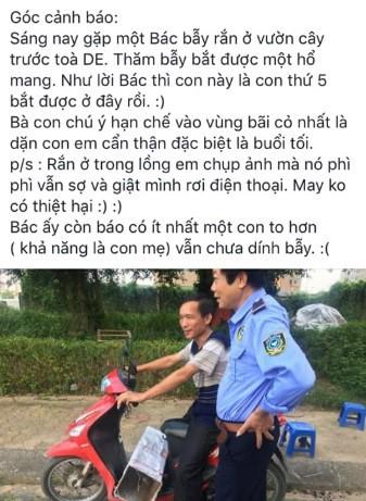 Dân phản ánh rắn hổ mang phi thân ra mổ người đi xe máy tại khu chung cư ở Hà Đông - Ảnh 4.