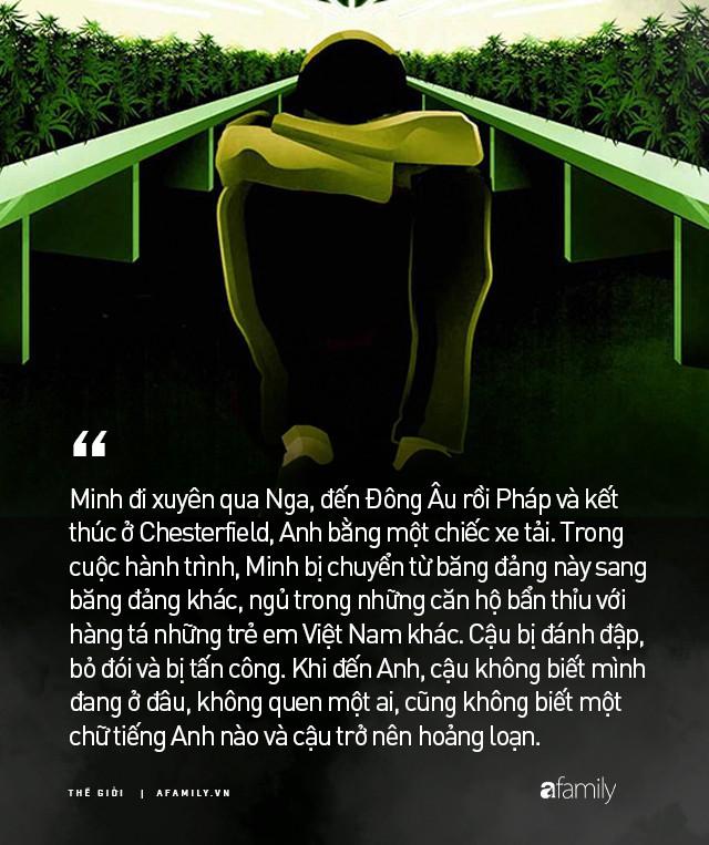 Cuộc đời nô lệ của cậu bé người Việt bị bán sang Anh trồng cần sa: Bị bắt cóc, tấn công tình dục và những sang chấn tâm lý kinh hoàng - Ảnh 3.