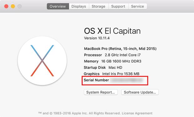 Hướng dẫn kiểm tra chính xác Macbook Pro có dính lỗi nổ pin và bị cấm bay hay không - Ảnh 2.