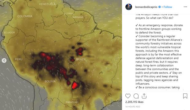 Kêu gọi sự quan tâm về cháy rừng Amazon nhưng bị Lindsay Lohan hỏi khó, Leonardo DiCaprio đáp trả ngay bằng bài viết 2 triệu like - Ảnh 2.