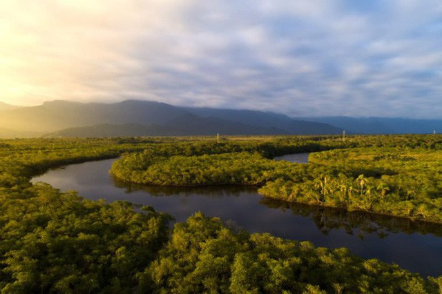 Loạt ảnh gây sốc về rừng Amazon bùng cháy với tốc độ kỷ lục: Khói có thể nhìn thấy từ ngoài không gian, các thành phố bị bao phủ mù mịt như tận thế - Ảnh 21.