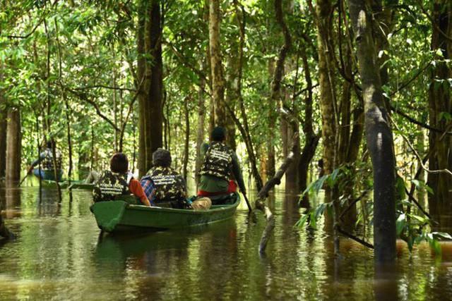 Loạt ảnh gây sốc về rừng Amazon bùng cháy với tốc độ kỷ lục: Khói có thể nhìn thấy từ ngoài không gian, các thành phố bị bao phủ mù mịt như tận thế - Ảnh 22.
