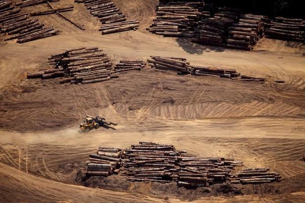Loạt ảnh gây sốc về rừng Amazon bùng cháy với tốc độ kỷ lục: Khói có thể nhìn thấy từ ngoài không gian, các thành phố bị bao phủ mù mịt như tận thế - Ảnh 24.