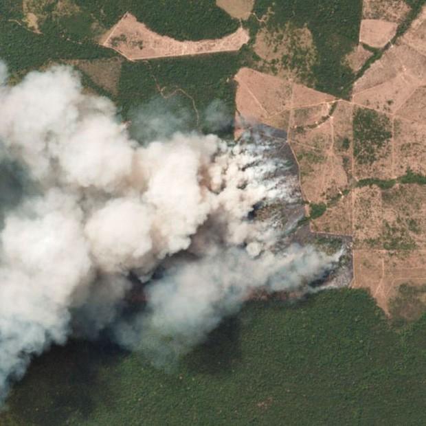 8 tháng 100.000 vụ cháy, thảm họa tầm cỡ địa cầu: Đây là tình hình cháy rừng đang diễn ra tại Amazon vào lúc này - Ảnh 7.