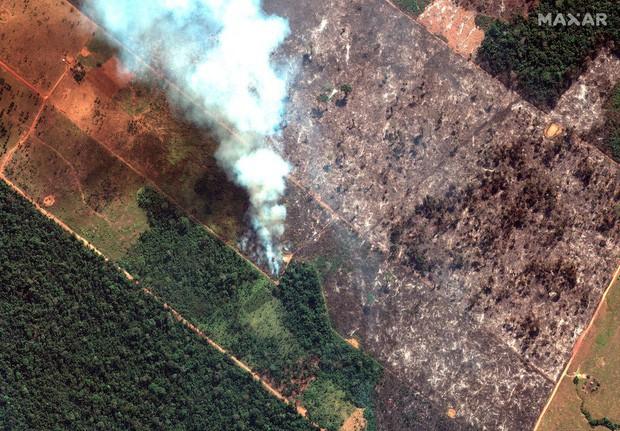 """Thảm họa của thế kỉ 21: Rừng Amazon có thể tự dập lửa nhưng bị chính con người """"bức tử"""" và sự trả thù của thiên nhiên sẽ vô cùng tàn khốc - Ảnh 1."""