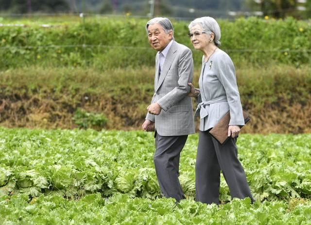 Ngôn tình ngoài đời thực: Vợ chồng cựu Nhật hoàng nắm tay nhau hưởng thú vui tuổi già, 60 năm tình yêu vẫn vẹn nguyên - Ảnh 2.