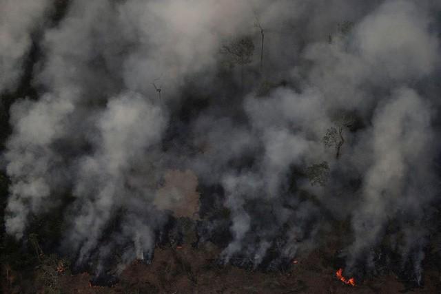 """Thảm họa của thế kỉ 21: Rừng Amazon có thể tự dập lửa nhưng bị chính con người """"bức tử"""" và sự trả thù của thiên nhiên sẽ vô cùng tàn khốc - Ảnh 6."""