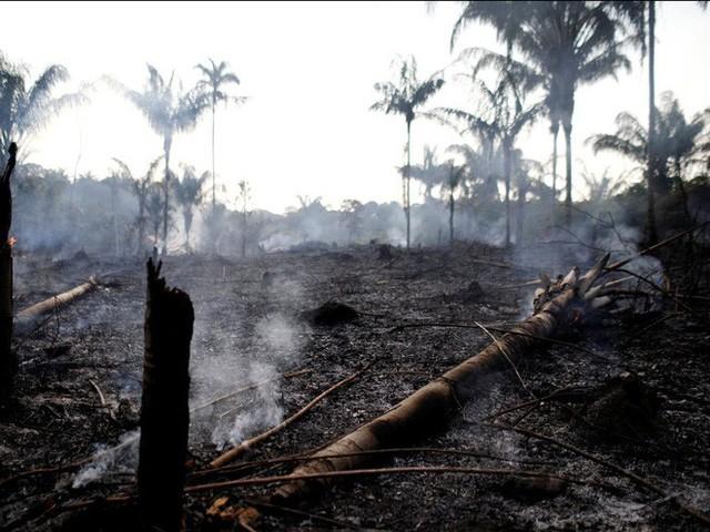 """Thảm họa của thế kỉ 21: Rừng Amazon có thể tự dập lửa nhưng bị chính con người """"bức tử"""" và sự trả thù của thiên nhiên sẽ vô cùng tàn khốc - Ảnh 7."""