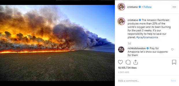"""- photo 1 15667941704921692188565 - Dàn sao """"nhầm nhọt"""" đăng status về cháy rừng Amazon: Ronaldo chọn sai ảnh, Dicaprio và Madonna lấy nguồn từ vài chục năm trước"""