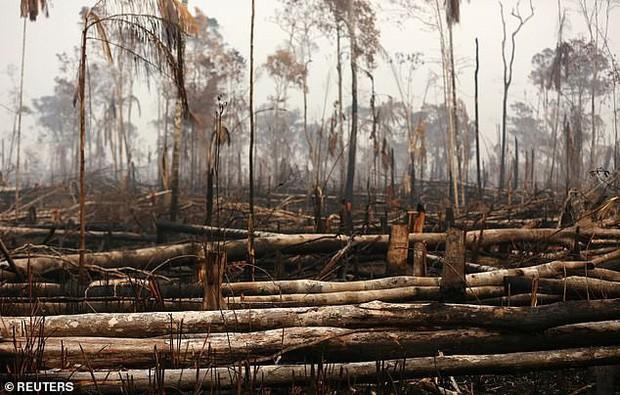 Dân bản địa Brazil gào khóc trước cảnh tượng rừng Amazon bốc cháy: Họ đang giết chết những dòng sông và nguồn sống của chúng tôi - Ảnh 5.