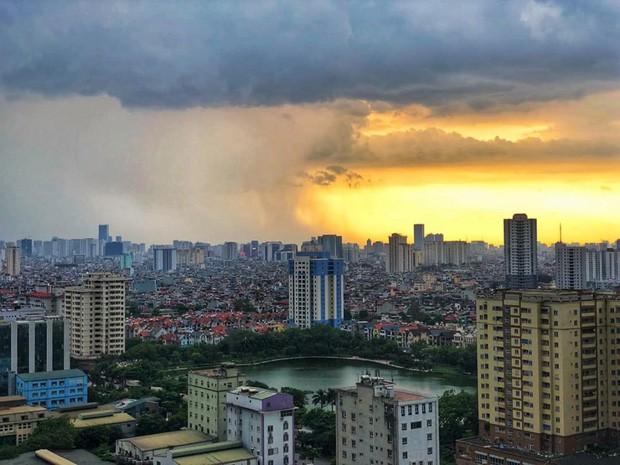 Cây xanh đổ khắp Hà Nội do ảnh hưởng của bão số 4, một thanh niên 26 tuổi tử vong thương tâm - Ảnh 2.