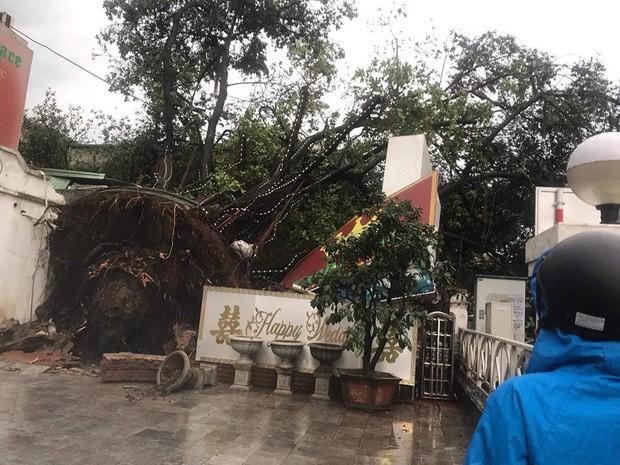 Xót xa cảnh người thân gào khóc thảm thiết tại hiện trường nam thanh niên tử vong vì cây đổ ở Hà Nội - Ảnh 1.