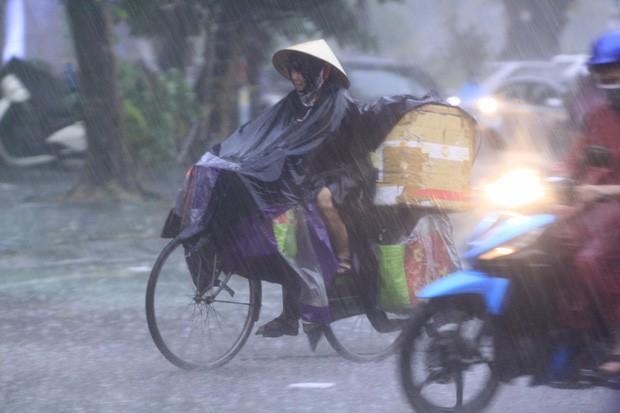 Cây xanh đổ khắp Hà Nội do ảnh hưởng của bão số 4, một thanh niên 26 tuổi tử vong thương tâm - Ảnh 15.