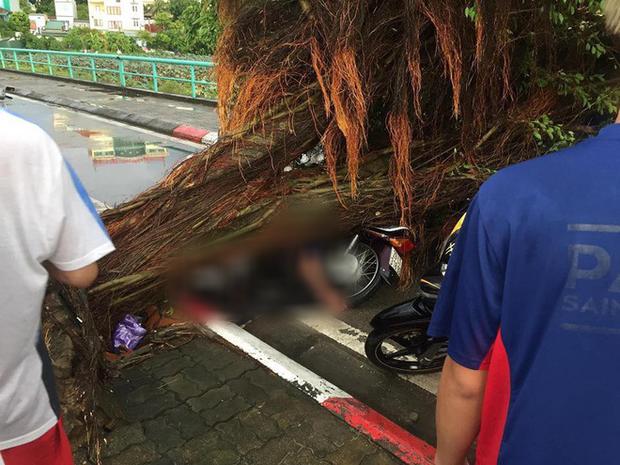 Cây xanh đổ khắp Hà Nội do ảnh hưởng của bão số 4, một thanh niên 26 tuổi tử vong thương tâm - Ảnh 26.