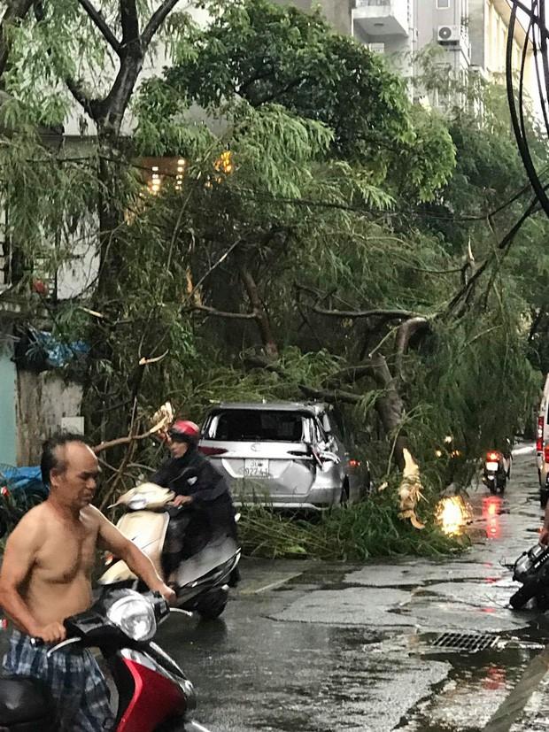 Cây xanh đổ khắp Hà Nội do ảnh hưởng của bão số 4, một thanh niên 26 tuổi tử vong thương tâm - Ảnh 7.
