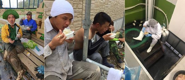 Đằng sau những tờ tiền người Việt ở Nhật gửi về quê: Bữa cơm toàn lạc với trứng, phơi thân giữa đường trong cái nóng 40 độ C - Ảnh 3.
