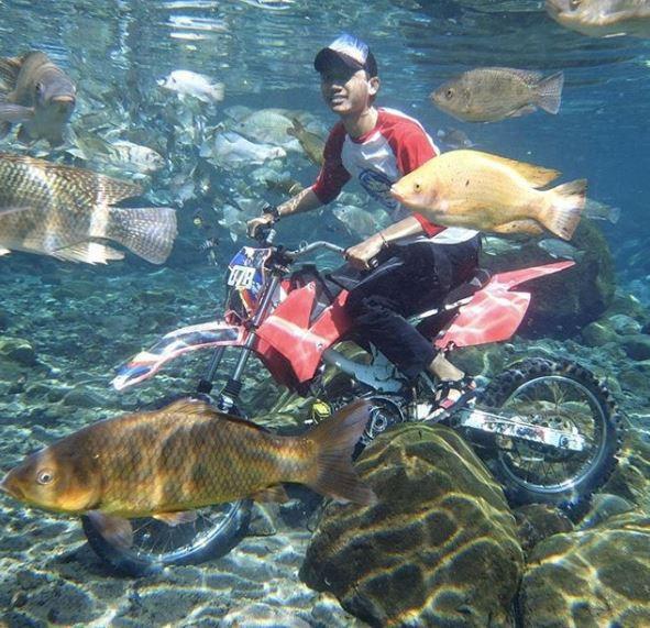 """những ngôi làng nghèo bậc nhất indonesia - photo 3 15650648843061024374708 - Dân du lịch Indonesia đổ xô đến """"sống ảo"""" dưới nước tại ngôi làng có một không hai này"""