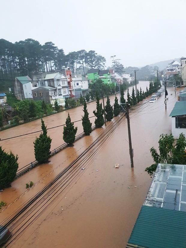 Nhiều người sốc nặng không nhận ra đây là Đà Lạt vì chìm trong biển nước, lật đật bỏ ngay tour du lịch vào cuối tuần này  - Ảnh 5.