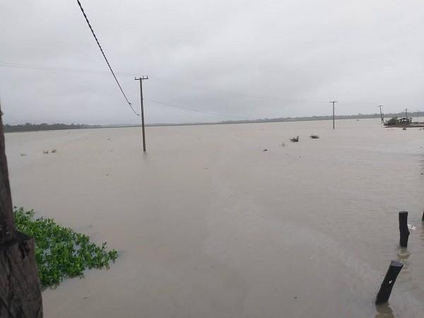 1.500ha trái cây của HAGL tại Lào bị ngập lụt - Ảnh 1.